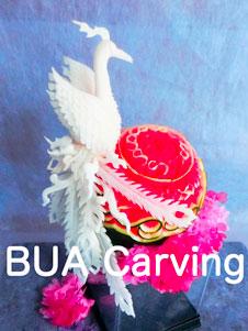 BUA Carving