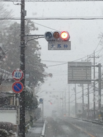 Snowing11