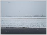 SnowView11
