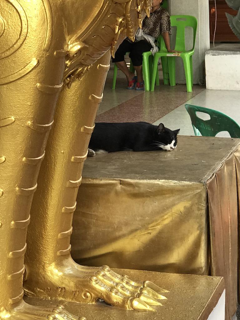 Thailand55