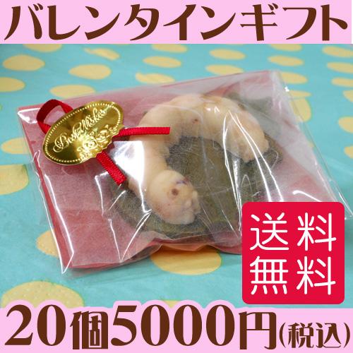 蚕のチョコレート11