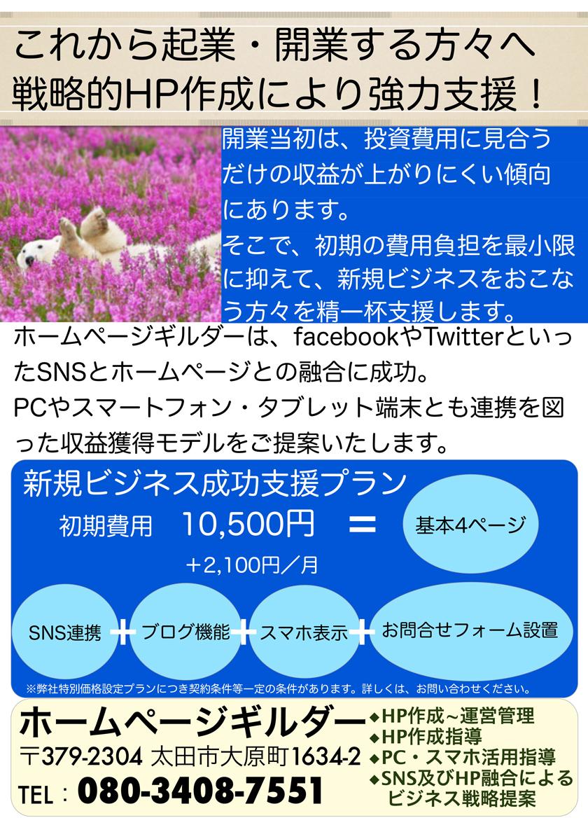 HPG_新規ビジネス成功プラン840_チラシ