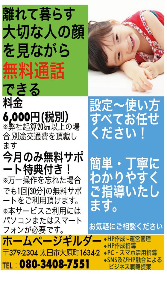 スカイプ設定6000円ちらし558X941