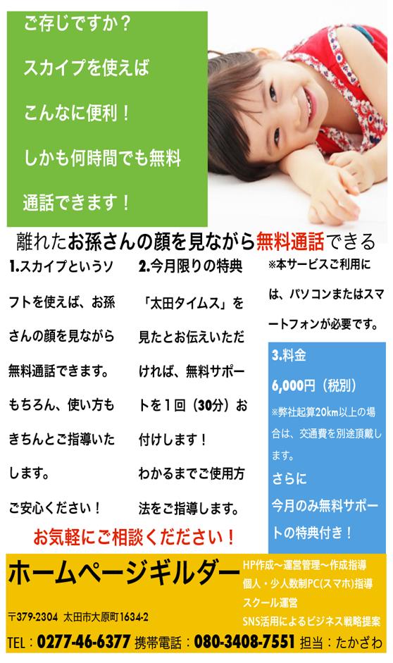 スカイプ設定6000円ちらし99X59